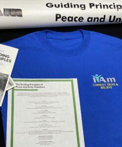 I Am Correct Ideas and Beliefs T-Shirt – Blue